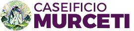 Logo Murceti top